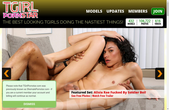 TGirl Pornstar