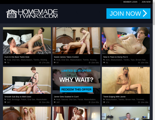 HomeMadeTwinks.com