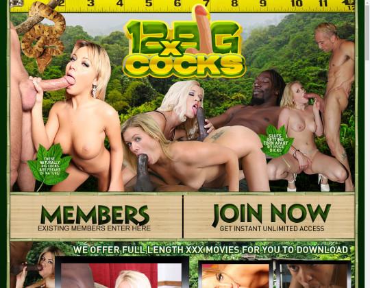 12xBigCocks.com